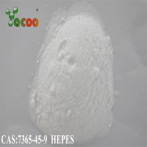 99.5% purity HEPES CAS:7365-45-9 2-[4-(2-hydroxyethyl)piperazin-1-yl]ethanesulfonic acid